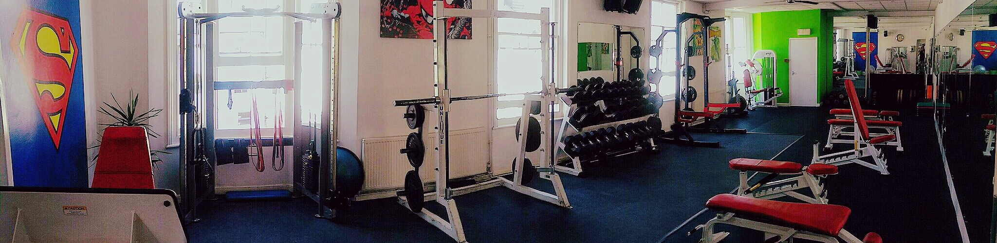 1st Floor, Back Room – Free Weights and Resistance Machines